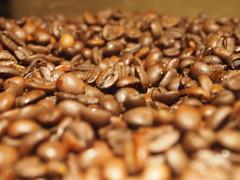 Where you been, bean? (lindscatt) Tags: costa brown coffee java beans dof bokeh joe depthoffield coffeebeans cupofjoe