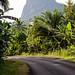 Road to South. Sao Tomé.
