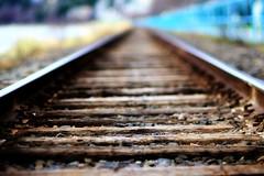 DSC09496 (R Paz) Tags: sony rail traks a550