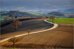another view (Luigi Alesi) Tags: goldcollection italia italy marche macerata san severino paesaggio landscape scenery collina dei ciliegi nikon d90 raw