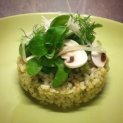 #risotto #arrozintegral #albahaca #canonigos #championes #hinojo #vinagreta #mostaza #miel #vinagredearroz #healthy #healthyfood #healthyeating #ibiza2016 #ibiza (felipefaouakhiri) Tags: healthy ibiza miel risotto healthyfood mostaza hinojo healthyeating championes albahaca vinagreta arrozintegral canonigos vinagredearroz ibiza2016