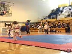 stefanou_15_5_2016_knockdown_78