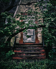 Use The Back Door... (Mister Day) Tags: door trees house overgrown edmonton steps front foliage alberta porch hermit dense