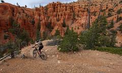 hoodootropolis (csnyder103) Tags: woman girl bike landscape outside utah rocks mountainbiking hoodoos canonefs1022 canoneosrebelsl1