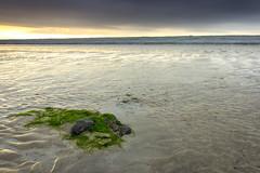 westward ho! morning (jon.capps) Tags: ocean uk longexposure sea summer cloud seaweed water sunrise canon rocks tripod pebbles hdr shutterrelease manfrotto britan westwardho 1740mmf4 nd06 60d northdevonbeaches canon1740mm14lusm