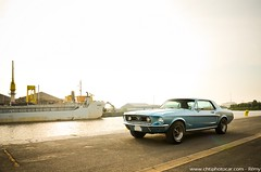 Ford Mustang Code J 1968 347 Stroker (Rémy | www.chtiphotocar.com) Tags: ford motor company fomoco mustang pony v8 302 347 stroker tiffany blue muscle car american usa small block code j 1968 coupé photo nikon sigma lightroom photoshoot knokke le zoute heist belgium belgie