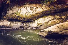 sunset^picnic (^ autumn deluded) Tags: light sunset nature water analog forest river exposure explore analogue filmgrain naturephotography filmisnotdead natureaddict