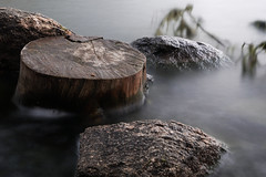 Stump (phnrested) Tags: lake art long exposure sony sigma mount e alpha gregory 6300 apsc mirrorless a6300 metabones