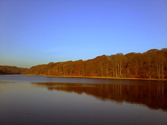 Waterloo Lake, Roundhay (Tarif Ullah) Tags: cameraphone blue autumn trees england sky lake water reflections landscape leeds waterloo serene roundhaypark landscapephotography wateroceanslakesriverscreeks beautifulscenerylandscapes