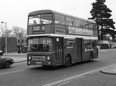 AN53 Danestrete, Stevenage (national_bus_510) Tags: