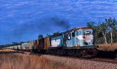 1160 near Pentland. (rodneygaulke) Tags: pentland queenslandrailways 1162