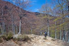 Scialpinismo Laga - Cima Lepri da Piana Cavalieri
