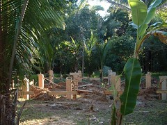 Detatched Cottage Construction (Dis da fi we) Tags: puntagorda toledodistrict belize toledo hickateebelize hickateepuntagorda jungle rainforest forest wildlife culture hickatee