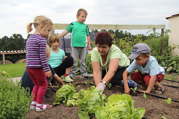 Kinder im Kräutergarten