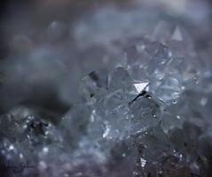 Keokuk Geode - 21 (ElaineSeleneOriginal) Tags: detail macro rock stone closeup rocks crystals natural crystal stones iowa minerals mineral geode quartz keokuk gem reverselens gemstone reverselensmacro geodes chalcedony keokukgeode keokukiowageode iowageode