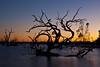 _MG_9953 (Natalie Dang) Tags: lake pamamaroo