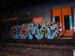 instantes eternos (lama dn) Tags: street france art colors train tren graffiti colores lama graff francia dn 2011 bombardie