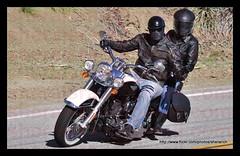 _DSC9061 (sheraisrad) Tags: cars cyclists sunday bikes rockstore thesnake rockstorephotoscom paulherold couplesonmotorcycles