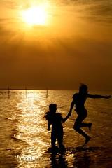 خيوط الشمس (alanood.m.m) Tags: sunset sea sun canon children gold waves play rise غروب البحر شروق الشمس أشعة اطفال كانون d1000 امواج alanood ذهبية
