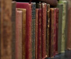 Books (Camilla Hoel) Tags: austen james books dickens bibliophile calcuttagutta removedfrom1to5faves