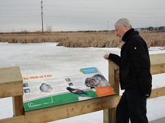 Len enjoys nature watching on the John E. Poole Wetland walkway