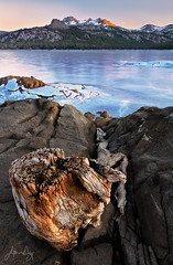 Tree Stump and Root (jeandayphotography.com) Tags: california ca trees winter sunset lake snow mountains color ice stone forest reflections landscape january granite norcal sierranevada 2012 jday easternsierranevada jeanday