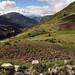 Bel paesaggio montano a 3900m verso Andahuaylas