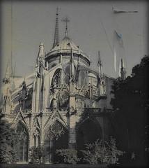 1076 Paris (Nebojsa Mladjenovic) Tags: city light urban black paris france art texture monochrome digital dark french outdoors lumix frankreich panasonic architektur frankrijk francia francais oldpostcard fz50 noterdame svetlost noterdamedeparis mladjenovic
