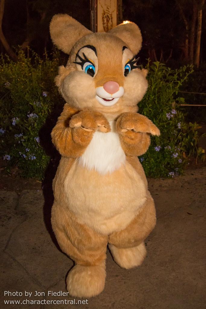 Miss Bunny Nude Photos 17