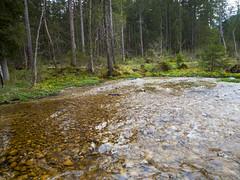Strummen 2014 (turbok) Tags: bach landschaft strummen wald wasser c kurt krimberger