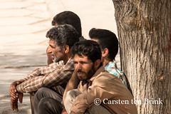Quartet (10b travelling) Tags: persian asia asien iran middleeast persia shiraz asie iranian 2014 neareast moyenorient naherosten mittlererosten tenbrink carstentenbrink westernasia iptcbasic 10btravelling