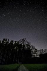 Der Weg ins Dunkel (matthias_oberlausitz) Tags: nacht himmel wald bume weg sterne pfad dster bieleboh brunnenweg