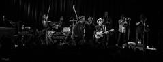 Southside Johnny Zeche Bochum 2016  _MG_1319 (mattenschuettlerphoto) Tags: newjersey concert live asbury concertphotography 6d jukes zechebochum southsidejohnny canon6d