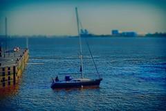 High Society (Wischhusenpixel) Tags: blue outdoor experiment weser blau bremerhaven segelboot fredastaire norddeutschland bildbearbeitung graciapatricia connywischhusen wischhusenpixel