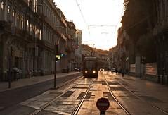 Ligne 4 in de Rue de la Rpublique (Gerard Stolk (vers l'Allemagne)) Tags: tram montpellier streetcar trams tramway tam ruedelarpublique lijn4 avondschemering ligne4 rt4 staszenbahn