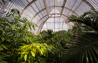 The Glass House, The Royal Botanic Gardens, Kew, London, United Kingdom