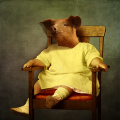 The patient baby (Martine Roch) Tags: portrait baby cute texture animal vintage square pig costume funny antique surreal photomontage surrealist piglet martineroch thecharacters flypapertextures lescaractres