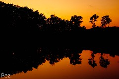 """Ardi mi memoria... (Pez Fotografia) Tags: barcelona sunset espaa pez landscape atardecer spain nikon paisaje lee lleida lerida filtros 2011 valldaran d80 flickerosdeibiza valldaran2011"