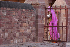 glimpse of pink, jodhpur (nevil zaveri) Tags: street pink people woman india color colour wall walking photography blog women gate iron poetry artist poem photographer veiled veil photos fort walk documentary images poetic story photographs photograph zaveri rajasthan stockimages jodhpur nevil nevilzaveri