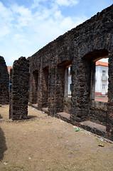 Alcntara e seus casares abandonados (Fernando Pinto SLZ) Tags: rio bufalo cavalo campos baixada peo camposinundados cidadedepinheiro