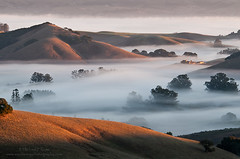 A Country View (michael ryan photography) Tags: fog sunrise photography michael morninglight ryan sonoma petaluma sonomacounty goldenhills wilsonhill michaelryanphotography