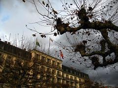 5. Rooms with a view (overthemoon) Tags: trees winter tree rain grey hotel schweiz switzerland suisse cloudy gray flags svizzera raining tilt slant gcc vevey vaud romandie troiscouronnes overthemoonphotographingyourareaassignment