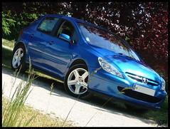 Participation concours (kity54) Tags: auto blue cars car french automobile shoot francaise 110 lion tags voiture panasonic bleu nancy concours lorraine peugeot berline dmc francais bleue xsi 307 hdi vhicule lionne rcife tz5
