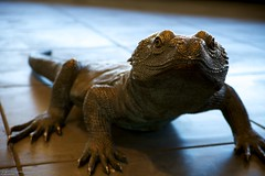 Hola! (johnrudy3) Tags: redrockcanyon sculpture statue lizard redrock statuary