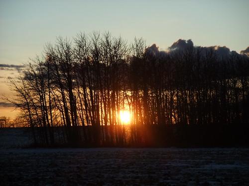 20111210_Sunset-1013