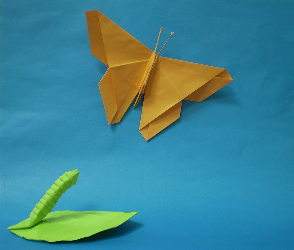 The World's Best Photos of caterpillar and origami ... - photo#5