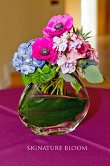 Flowers Los Gatos California, Low Centerpieces (Signature Bloom) Tags: pictures flowers blue winter wedding decorations flower fall floral rose for design spring designer events stock sanjose images reception anemone designs florist vendor siliconvalley hydrangea weddings bridal decor peninsula southbay ideas weddingflowers arrangements hotpink sanjoseca losgatosca florists specialevents centerpieces weddingideas bluewedding losgatoscalifornia 95121 95032 lowcenterpieces flowersforwedding lowcenterpieceideas hotpinkwedding signaturebloom losgatosweddingflowers wwwsignaturebloomcom losgatosweddingflorist bridalflorist losgatosflorist weddingfloristlosgatosca flowerslosgatoscalifornia