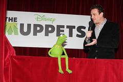 Kirmit the Frog, Jason Segel