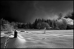 St Nicolas des Biefs (@lain G) Tags: neige allier arbre forêt auvergne givre saintnicolasdesbiefs