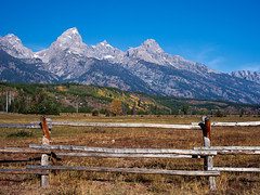 Autumn at the Meadow (txcraig75) Tags: autumn fence foliage wyoming grandteton grandtetonnationalpark gtnp teewinot tetoncounty cathedralgroup mountowen buckrailfence canon5dmarkii contaxzeiss3570mm cz3570mm